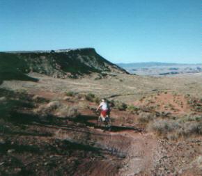 Bear Claw Poppy Trail - specialized mountain bike in st. george